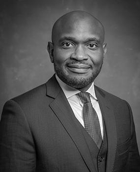 Mr. Steve Olisa Iwenjora